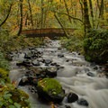 Footbridge below the falls with the creek at high flow.- Bridal Veil Falls, Oregon