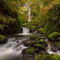 Elowah adorned in fall colors- Elowah Falls HIke