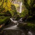 The creek below the falls is worth exploring- Elowah Falls HIke
