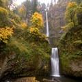 Multnomah Falls + Lodge
