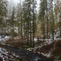 Silver Creek below Lower South  Falls- Silver Falls, Trail of 10 Falls
