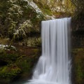 Lower South Falls, partially clad in white.- Silver Falls, Trail of 10 Falls
