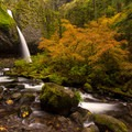 Ponytail (Upper Horsetail) Falls surrounded by autumn colors- Columbia River Gorge National Scenic Area