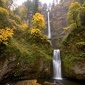 Multnomah Falls surrounded by fall colors- Multnomah Falls Hike to Multnomah Creek