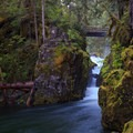 Opal Creek is channeled through a narrow passage before plunging into Opal Pool- Opal Creek Hiking Trail