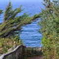 View to the west from along the south walkway.- Cape Meares Lighthouse