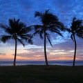 Palms look on at twilight at Maili Point.- Ma'ili Beach Park