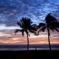 A beach goer under palms look on at twilight at Maili Point.- Ma'ili Beach Park