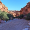 The trail resembles a wash through the Havasupai trail canyon- Havasu Falls Hike via Havasupai Trail