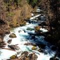 Great views on the way- McKenzie River Trail: Trail Bridge to Tamolitch Pool