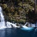 Mesmerising- McKenzie River Trail: Trail Bridge to Tamolitch Pool