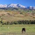 Horse ranch on Last Dollar Road.- Last Dollar Road