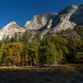 Mirror Lake is gone but the fall colors are in!- Yosemite National Park
