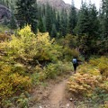 Bright yellow colors emerging from the green- Granite Lake + Seven Up Pass