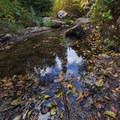 Reflections of fall in a puddle- Granite Lake + Seven Up Pass