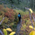 Hiker passes through a tunnel of color- Granite Lake + Seven Up Pass