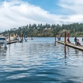 The Waldport docks are popular with boaters and crabbers on a Sunday afternoon- Alsea Bay Marina + Robinson Park