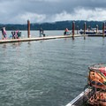 Many people crabbing on the outer dock- Alsea Bay Marina + Robinson Park