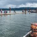 Many people crabbing on the outer dock- Alsea Bay Marina + Robinson Park