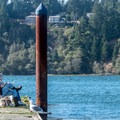 A relaxing afternoon- Alsea Bay Marina + Robinson Park
