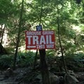 At the bottom- The Grouse Grind + Goat Ridge