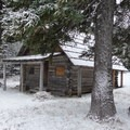 Olallie Meadow cabin- Olallie Meadow Campground