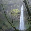 Elowah 3/23/2013- Elowah Falls HIke