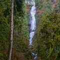The falls from the best viewpoint.- Munson Creek Falls State Natural Area