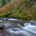 More of the creek runout.- Munson Creek Falls State Natural Area