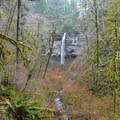 Pheasant Creek Falls- Niagara Falls + Pheasant Creek Falls