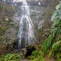 Niagra Falls- Niagara Falls + Pheasant Creek Falls