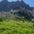 Flowers - Canyon Creek Meadows