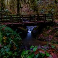 A footbridge along the trail to the falls.- Soda Creek Falls Trail