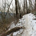 A sample of the trail conditions today. Any steep sections were sketchy due to this ice/hard-pack- Cape Horn Loop Hike