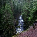 Looking down on the Mckenzie River from above as you near the pool- McKenzie River Trail
