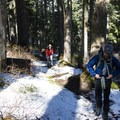 Snow along the trail near the Top Spur Trailhead.  This path was clear of snow two weeks before.- Mount Hood: Sandy Glacier Ice Caves