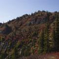 Mount Margaret via Norway Pass