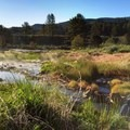 The source creek near the first pool. - East Fork Carson River Hot Springs