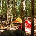 Cougar Rock Campground along the Nisqually River.- Wednesday's Word - Nisqually