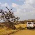 Daan Viljoen Nature Reserve.- The Ultimate Namibia Road Trip