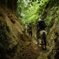 Weaving through towering walls in Puerto Vallarta on horseback, en route to a waterfall.- 3-day Adventure Itinerary in Puerto Vallarta, Mexico
