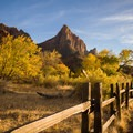 Watchman's Tower in Zion National Park.- Leica Akademie Photography Workshop in Zion National Park