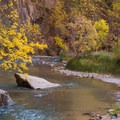 Virgin River in autumn.- Leica Akademie Photography Workshop in Zion National Park