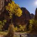 Big Bend of the Virgin River.- Leica Akademie Photography Workshop in Zion National Park