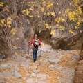 Cheryl hiking the flood wash.- Leica Akademie Photography Workshop in Zion National Park