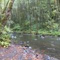 - Oregon Fall Photo Contest