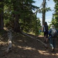 Hiking the High Prairie Trail to Lookout Mountain's summit.- Exploring Lookout Mountain with Oregon Wild