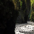 Oneonta Gorge in the Columbia River Gorge- Video: Rivers of the Pacific Northwest