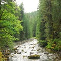 Salmon-Huckleberry Wilderness Area, Mount Hood National Forest.- U.S. Forest Service