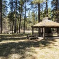 Original 1930s CCC-built shelter at Camp Sherman Campground- Camping on the Metolius River